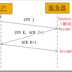 Linux Socket编程(不限Linux)