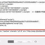 CSP — 运营商内容劫持(广告)的终结者